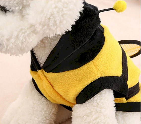 Super Cute Bee Style Clothes for Small Dog with Hoodie